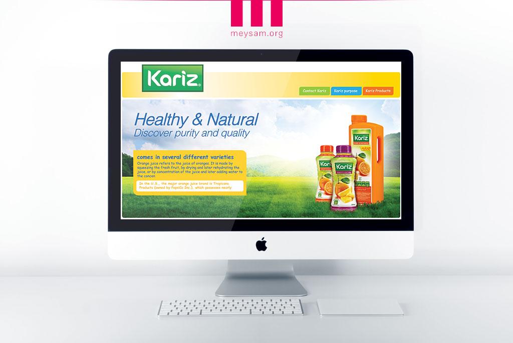 طراحی وبسایت کاریز